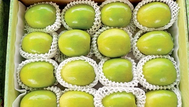 A box of apple ber produced at Dammapet mandal in Khammam which will be sent to Hyderabad where there is a heavy demand for the fruit | express photo