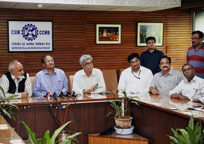 CCMB-IIRR tie-up for low GI rice | Telangana First